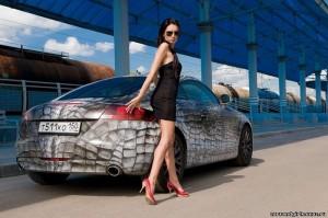 audi-tt-8j-aswome-car-apint-with-babe
